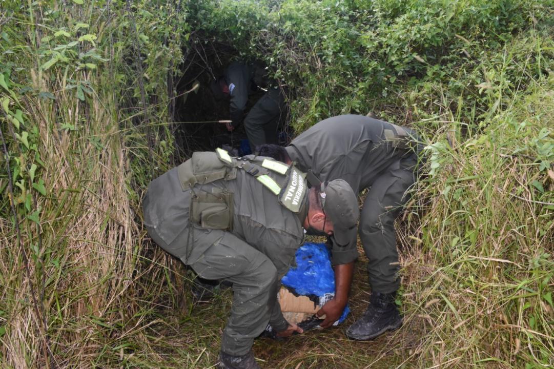 Gendarmes detectan m_s de 229 kilos de marihuana acopiadas entre la maleza (4).jpeg