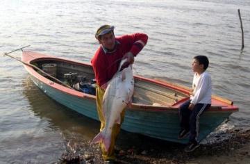 pesca_licencias.jpg