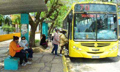 El Municipio autorizó servicios de colectivos, taxis y remises de cinco de la mañana a 23 horas