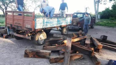 Secuestro piezas de madera de algarrobo Loma Senes.jpg