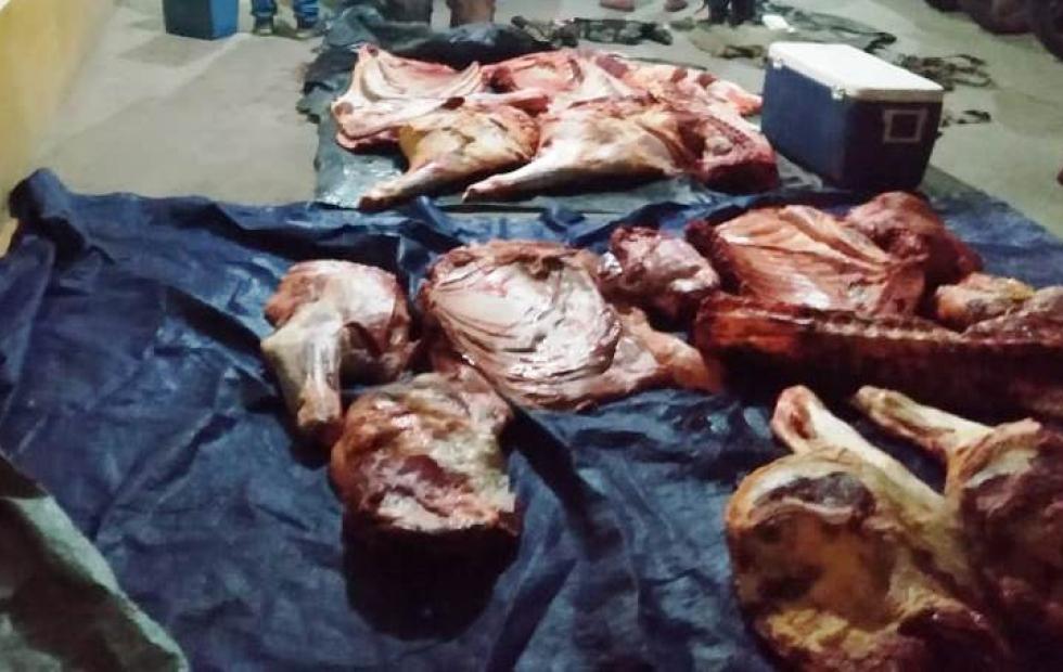 Dos sujetos transportaban 341 kilos de carne vacuna  en un auto y fueron detenidos